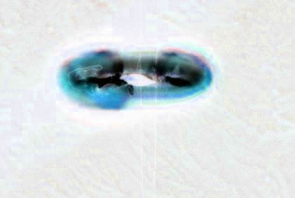 5Gemini 5, UFO, UFOs, sighting, sightings, alien, aliens, ET, space, new, paranormal, message, deep, radio, telescope, WOW, crop formation, contact, disclosure,